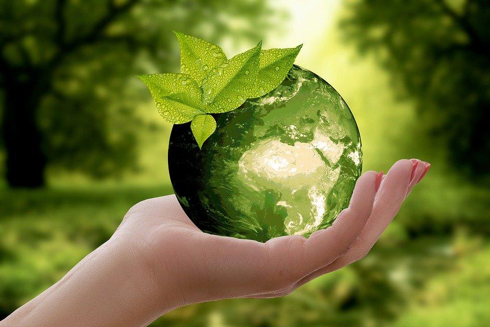 La Naturaleza, Tierra, Sostenibilidad, Hoja, Precaución