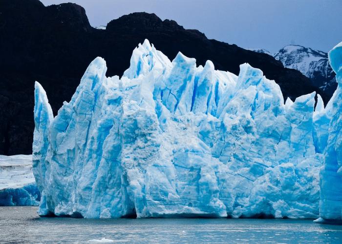 Una celebración para cuidar el medio ambiente, ¿por qué se celebra el día mundial de la naturaleza?