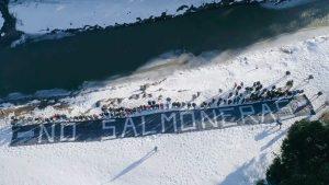 ley que prohíbe la salmonicultura en Tierra del Fuego