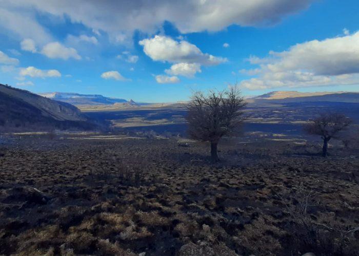 parque nacional patagonia abrirá